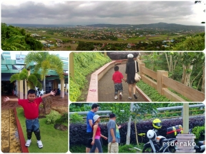 Sightseeing at Lignon Hill..