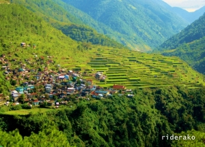 Igorot on Board (Part 3): Rice Terraces of the Cordilleras