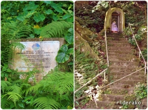 The marker near a grotto has nearly been covered by ferns.