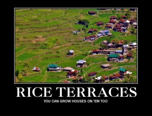 Bekigan... Rice Terraces? or House Terraces? Could Be Both!?