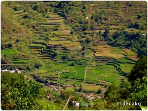 a portion of the Bekigan Rice Terraces viewed from Sacasacan
