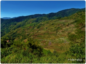 Focong Rice Terraces: Sacasacan's Pride That I Almost Missed