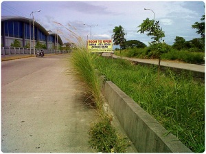 Soon to Open(?):Binan - Sta Rosa Access Road