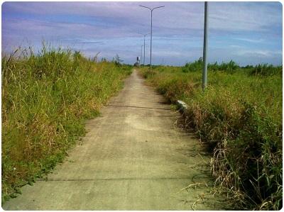 BNN-SRAccesRd_existingroad